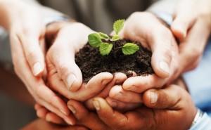Los bancos que invierten en la sostenibilidad pueden ser un catalizador para las buenas prácticas