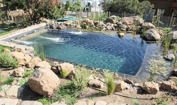 Chilenos construyen innovadoras piscinas naturales de agua for Construccion piscinas naturales