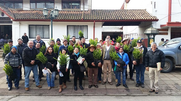 CORMA regaló 180 mil árboles a vecinos y comunidades del Biobío