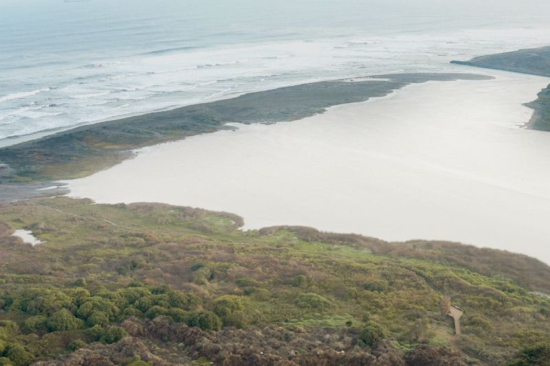 Santuario de la Naturaleza Humedal Río Maipo se oficializa con publicación en el Diario Oficial